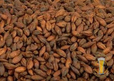 Foto donde podemos ver cebada malteada de forma casera con un color tostado parecido al marrón cobrizo