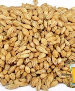 malta brewferm pils